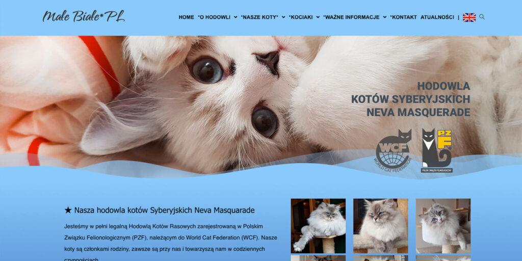 Strona hodowli kotów Syberyjskich Neva Masquarade